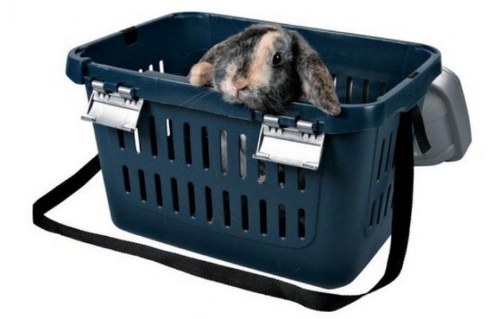 Корзина для перевозки кролика
